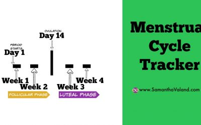 Menstrual Cycle Tracker (MCT)